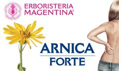 Arnica: the flower of health